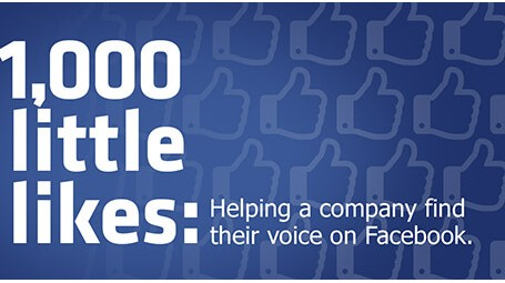 1,000 Little Likes: Helping a Company Find Their Voice on Facebook