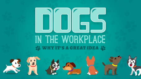 Dogs in the Workplace: Why It's a Good Idea